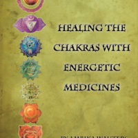 Healing the Chakras with Energy Medicines Cover